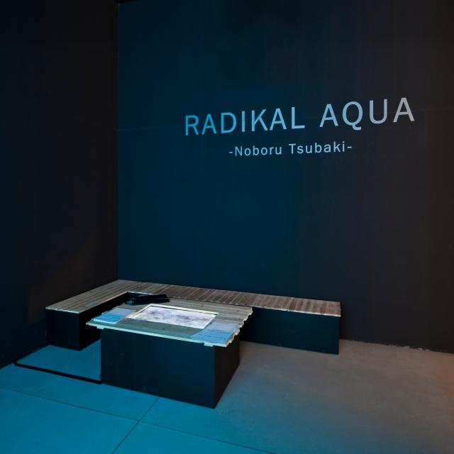 椿昇:激流, Radikal Aqua