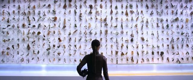 文敬媛和全浚皓 世界末日 录像 2012 供图:韩国现当代美术馆